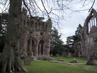 Remains of the inside of the abbey church